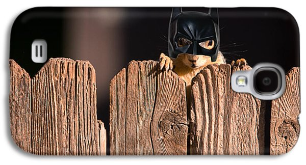 Fox Squirrel Galaxy S4 Cases - Bat Squirrel  the Cape Crusader known for putting away nuts.  Galaxy S4 Case by James BO  Insogna