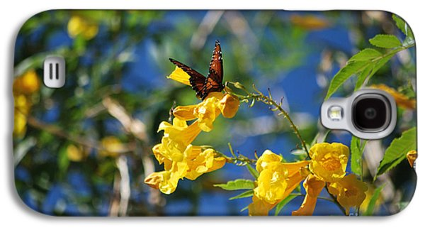 Bloosom Galaxy S4 Cases - Beautiful Butterfly Galaxy S4 Case by Donna Van Vlack
