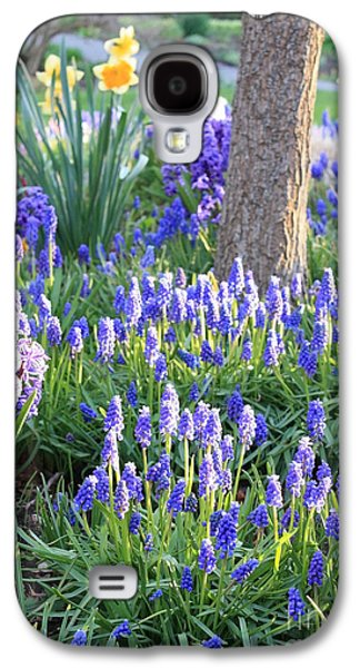 Sunlight On Flowers Galaxy S4 Cases - Beautiful Spring Day Galaxy S4 Case by Carol Groenen