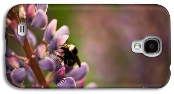 Close Focus Floral Galaxy S4 Cases - Bee and Lupine Galaxy S4 Case by Venetta Archer