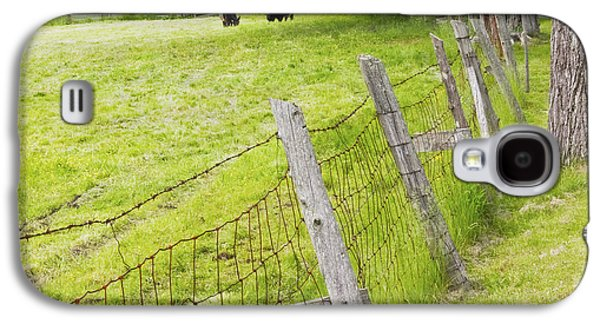 Maine Farms Galaxy S4 Cases - Belted Galloway Cows Farm Rockport Maine Galaxy S4 Case by Keith Webber Jr