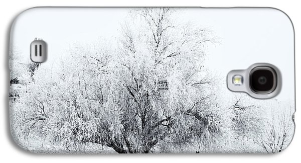 Yakima Valley Galaxy S4 Cases - Beneath a Frosty Canopy Galaxy S4 Case by Mike  Dawson