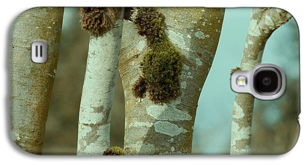 Trees Photographs Galaxy S4 Cases - Birch Galaxy S4 Case by Bonnie Bruno