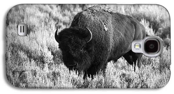 Bison In Black And White Galaxy S4 Case by Sebastian Musial