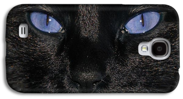 Cats Pyrography Galaxy S4 Cases - Black Cat Blue Eyes Galaxy S4 Case by Paul Ward