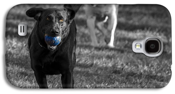 Dog Playing Ball Galaxy S4 Cases - Blue Ball Galaxy S4 Case by Jean Noren