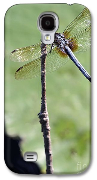 Preditor Galaxy S4 Cases - Blue Dasher Dragonfly Dancer Galaxy S4 Case by Sabrina L Ryan
