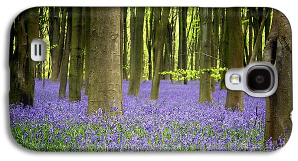 Green Galaxy S4 Cases - Bluebells Galaxy S4 Case by Jane Rix