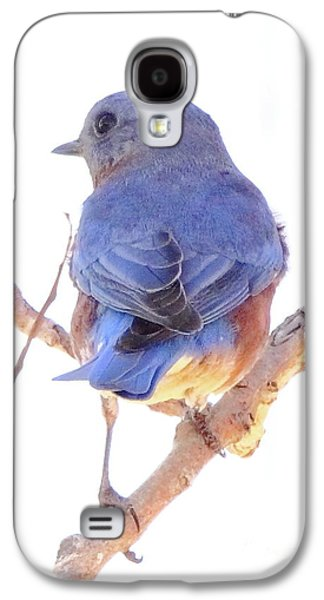 Business Decor Galaxy S4 Cases - Bluebird On White Galaxy S4 Case by Robert Frederick