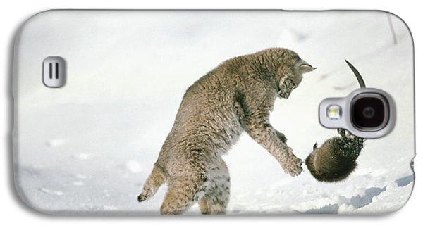 Lynx Rufus Galaxy S4 Cases - Bobcat Lynx Rufus Hunting Muskrat Galaxy S4 Case by Michael Quinton