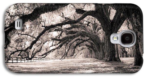 Trees Galaxy S4 Cases - Boone Hall Plantation Live Oaks Galaxy S4 Case by Dustin K Ryan