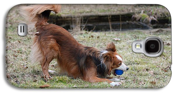 Dog Playing Ball Galaxy S4 Cases - Border Collie Playing With Ball Galaxy S4 Case by Mark Taylor