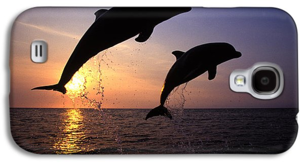 Bottlenose Dolphins Galaxy S4 Case by Francois Gohier and Photo Researchers