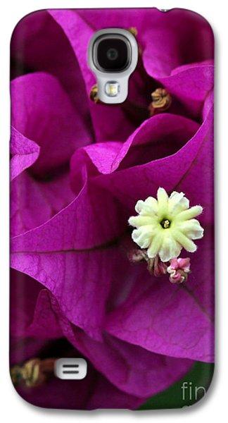 Florida Flowers Galaxy S4 Cases - Bouganvillea Macro Galaxy S4 Case by Sabrina L Ryan