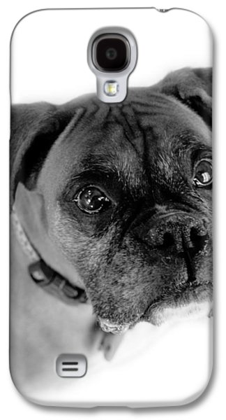 Boxer Galaxy S4 Cases - Boxer Dog Galaxy S4 Case by Marilyn Hunt