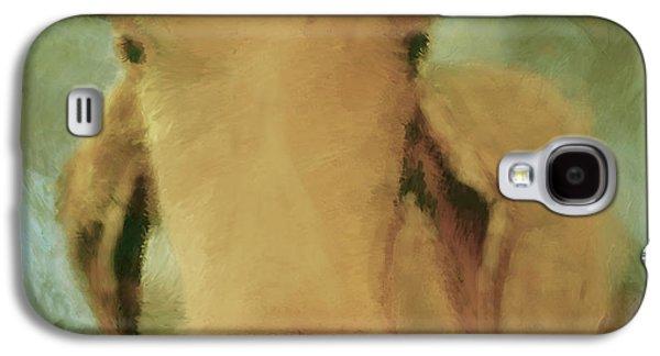 Cow Digital Galaxy S4 Cases - Brahma Cow Greeting Galaxy S4 Case by Ann Powell
