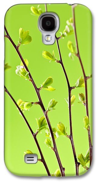 Branches With Green Spring Leaves Galaxy S4 Case by Elena Elisseeva