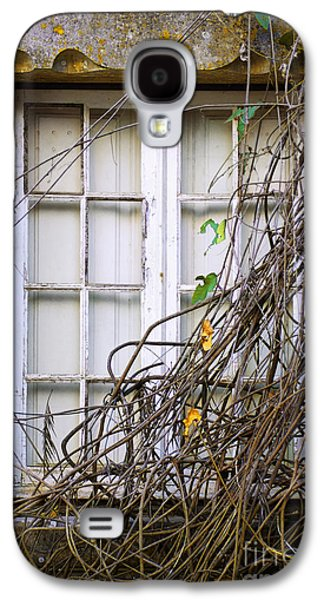 Mess Photographs Galaxy S4 Cases - Branchy Window Galaxy S4 Case by Carlos Caetano
