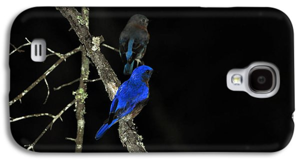 Young Birds Galaxy S4 Cases - Brilliant Blues Galaxy S4 Case by Al Powell Photography USA