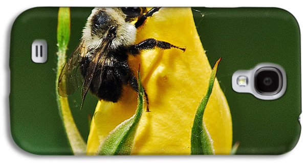 Rosaceae Galaxy S4 Cases - Bumble bee on rose  Galaxy S4 Case by Michael Peychich
