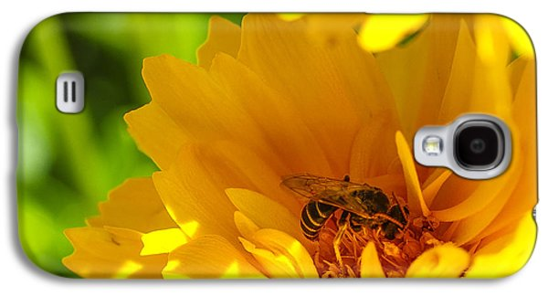 Pollinate Galaxy S4 Cases - Busy Bee  Galaxy S4 Case by Scott McGuire