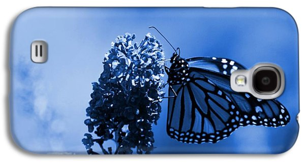 Sunlight On Flowers Galaxy S4 Cases - Butterfly In Blue Galaxy S4 Case by Angie Tirado
