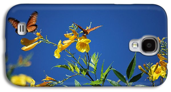 Bloosom Galaxy S4 Cases - Butterfly in the Sonoran Desert Musuem Galaxy S4 Case by Donna Van Vlack
