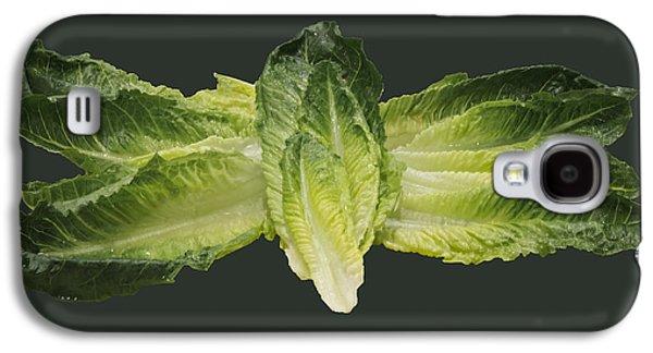 Romaine Galaxy S4 Cases - Butterfly Lettuce Galaxy S4 Case by LeeAnn McLaneGoetz McLaneGoetzStudioLLCcom