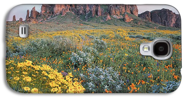 Mountain Photographs Galaxy S4 Cases - California Brittlebush Lost Dutchman Galaxy S4 Case by Tim Fitzharris