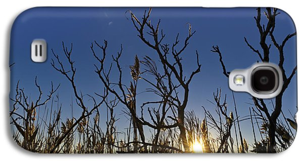Contemplative Photographs Galaxy S4 Cases - Cape Cod Marsh at Sunset Galaxy S4 Case by Marianne Campolongo