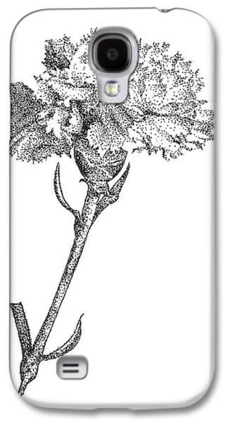 Studio Drawings Galaxy S4 Cases - Carnation Galaxy S4 Case by Christy Beckwith