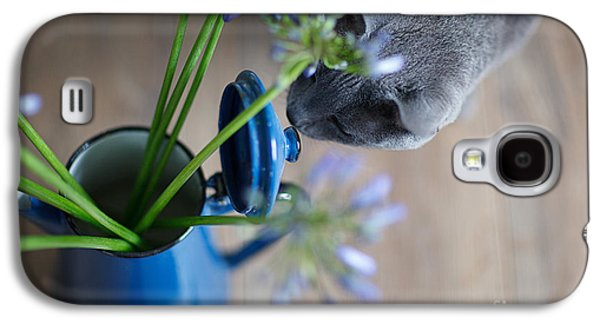 Furry Galaxy S4 Cases - Cat and Flowers Galaxy S4 Case by Nailia Schwarz