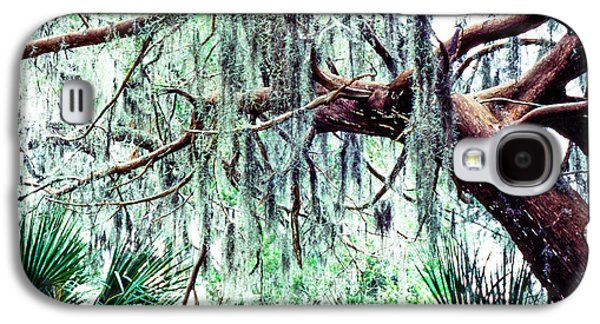 Epiphyte Galaxy S4 Cases - Cedar draped in Spanish Moss Galaxy S4 Case by Thomas R Fletcher