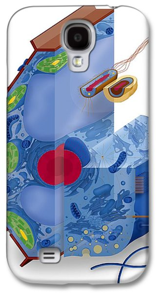 Prokaryote Galaxy S4 Cases - Cell Types, Artwork Galaxy S4 Case by Art For Science