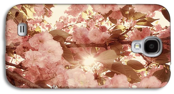 Cherry Blossoms Photographs Galaxy S4 Cases - Cherry Blossom Sky Galaxy S4 Case by Amy Tyler