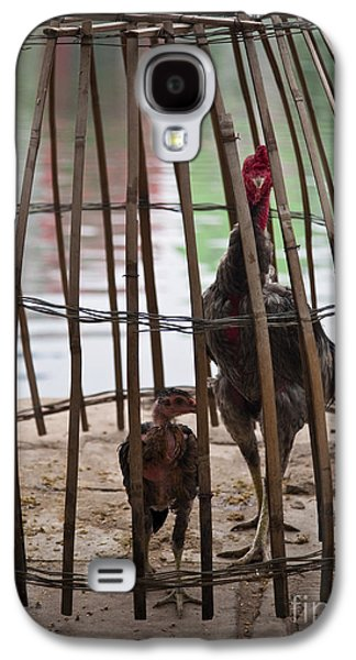 Makeshift Galaxy S4 Cases - Chickens in Bamboo Cage Galaxy S4 Case by David Buffington