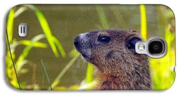 Chucky Woodchuck Galaxy S4 Case by Paul Ward