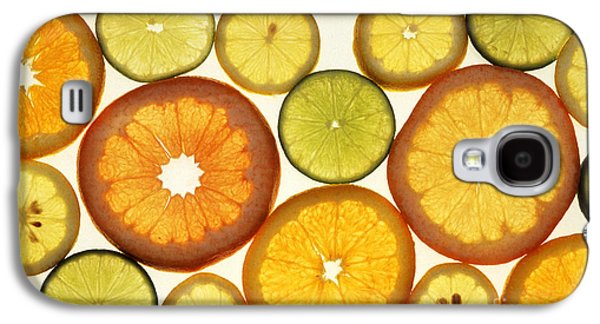 Citrus Slices Galaxy S4 Case by Photo Researchers