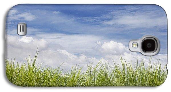 Useful Galaxy S4 Cases - Cogon Grass Galaxy S4 Case by Skip Nall
