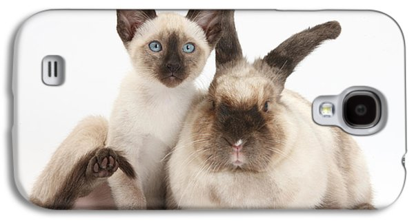 House Pet Galaxy S4 Cases - Colorpoint Rabbit And Siamese Kitten Galaxy S4 Case by Mark Taylor
