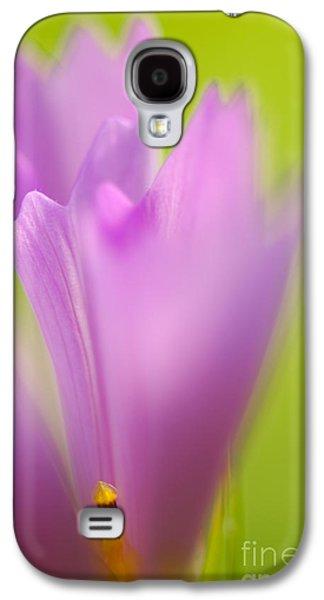 Green Galaxy S4 Cases - Cosmea Galaxy S4 Case by Silke Magino