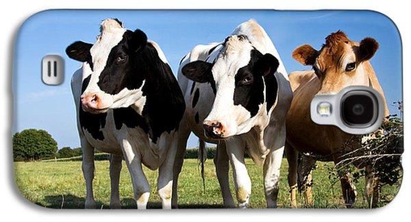 Pasture Scenes Galaxy S4 Cases - Cows Galaxy S4 Case by Jane Rix