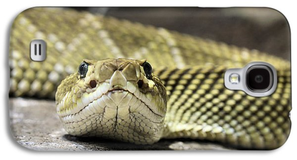 Crotalus Basiliscus Galaxy S4 Case by JC Findley