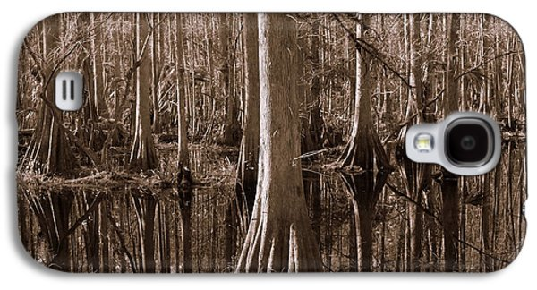 Cypress Swamp Galaxy S4 Cases - Cypress Swamp Reflection in Sepia Galaxy S4 Case by Carol Groenen