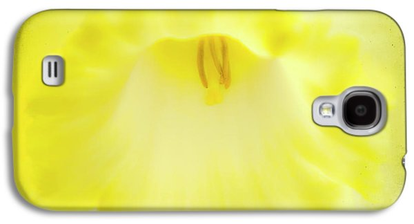 Stigma Galaxy S4 Cases - Daffodils Are Yellow Galaxy S4 Case by Meirion Matthias