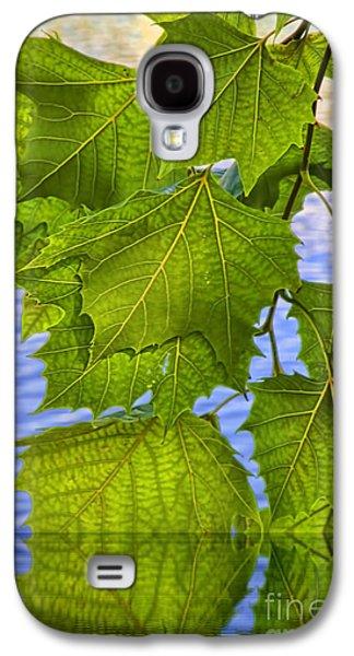Flooding Galaxy S4 Cases - Dangling Leaves Galaxy S4 Case by Deborah Benoit