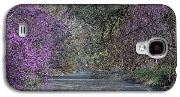 Uc Davis Galaxy S4 Cases - Davis Arboretum Creek Galaxy S4 Case by Agrofilms Photography