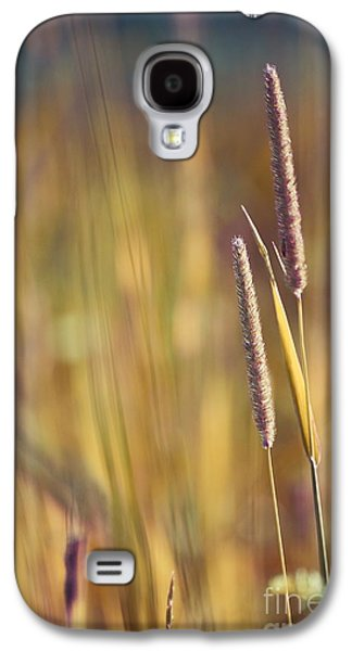 Aimelle Photographs Galaxy S4 Cases - Day Whisperings Galaxy S4 Case by Aimelle