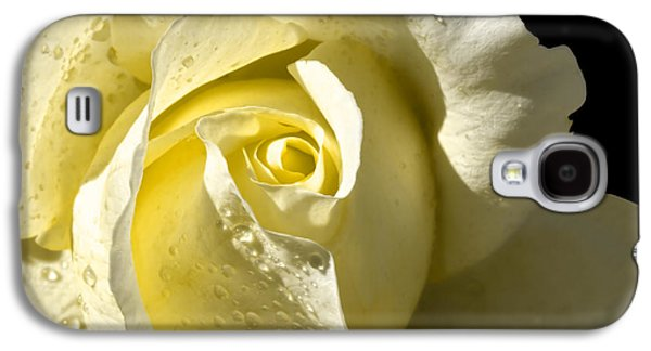 Sparkling Rose Galaxy S4 Cases - Delightful Yellow Rose With Dew Galaxy S4 Case by Tracie Kaska