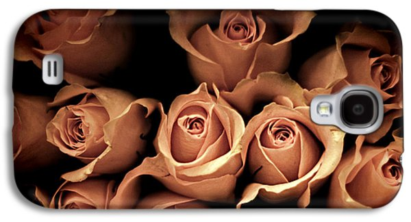 Roses Galaxy S4 Cases - Desire Galaxy S4 Case by Amy Tyler